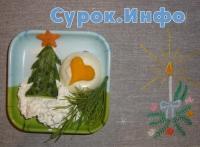 Новогоднее меню для домашнего питомца (1-2010) Фото: Мария Крюкова