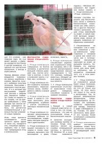 Газета СУРОК.ИНФО №1-2 (23), 2011 г., стр. 5