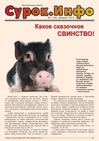 Газета СУРОК.ИНФО №1 (28), 2011 г., стр. 1