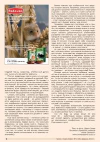 Газета СУРОК.ИНФО №1 (28), 2011 г., стр. 7