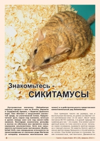 Газета СУРОК.ИНФО №1 (28), 2011 г., стр. 9