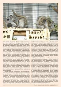 Газета СУРОК.ИНФО №1 (38), 2013 г., стр. 4