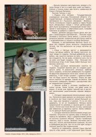 Газета СУРОК.ИНФО №1 (38), 2013 г., стр. 5