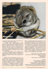 Газета СУРОК.ИНФО №1 (38), 2013 г., стр. 6