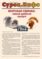 Газета «Сурок.Инфо» №1 (47), 2014