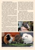 Газета СУРОК.ИНФО №1 (47), 2014 г., стр. 2