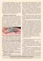 Газета СУРОК.ИНФО №1 (47), 2014 г., стр. 12
