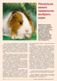 Газета СУРОК.ИНФО №2 (29), 2012 г., стр. 4