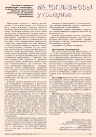Газета СУРОК.ИНФО №2 (29), 2012 г., стр. 5