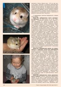 Газета СУРОК.ИНФО №2 (39), 2013 г., стр. 2