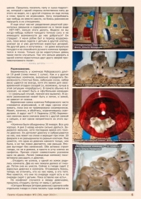 Газета СУРОК.ИНФО №2 (39), 2013 г., стр. 5