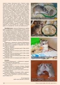 Газета СУРОК.ИНФО №2 (39), 2013 г., стр. 6