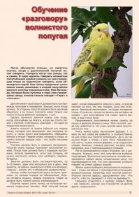 Газета СУРОК.ИНФО №2 (39), 2013 г., стр. 7