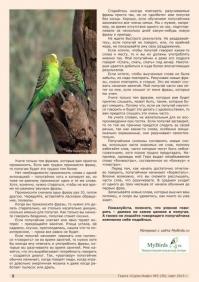 Газета СУРОК.ИНФО №2 (39), 2013 г., стр. 8