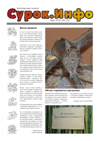 Газета СУРОК.ИНФО №3 (13), 2010 г., стр. 1