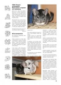 Газета СУРОК.ИНФО №3 (13), 2010 г., стр. 3