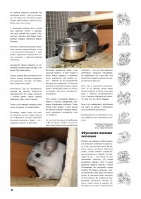 Газета СУРОК.ИНФО №3 (13), 2010 г., стр. 4