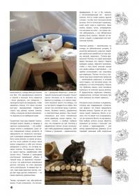 Газета СУРОК.ИНФО №3 (13), 2010 г., стр. 6