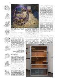 Газета СУРОК.ИНФО №3 (13), 2010 г., стр. 7