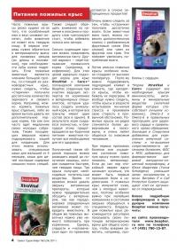 Газета СУРОК.ИНФО №3 (24), 2011 г., стр. 4