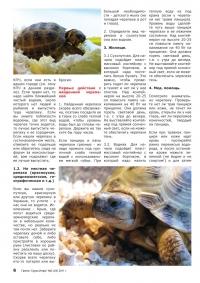 Газета СУРОК.ИНФО №3 (24), 2011 г., стр. 6