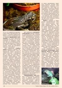 Газета СУРОК.ИНФО №3 (30), 2012 г., стр. 2