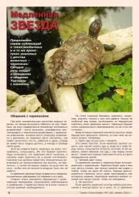 Газета СУРОК.ИНФО №3 (30), 2012 г., стр. 6
