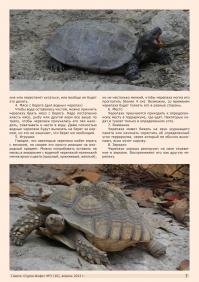 Газета СУРОК.ИНФО №3 (30), 2012 г., стр. 7