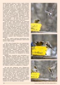 Газета СУРОК.ИНФО №3 (40), 2013 г., стр. 2