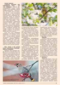 Газета СУРОК.ИНФО №3 (40), 2013 г., стр. 3