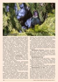 Газета СУРОК.ИНФО №3 (40), 2013 г., стр. 4