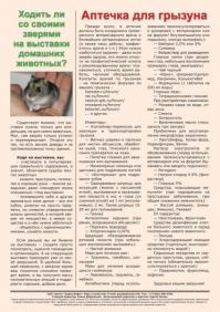 Газета СУРОК.ИНФО №3 (40), 2013 г., стр. 8