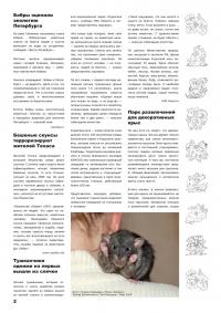 0410_2Газета СУРОК.ИНФО №4 (14), 2010 г., стр. 2