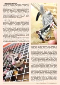 Газета СУРОК.ИНФО №4 (31), 2012 г., стр. 2