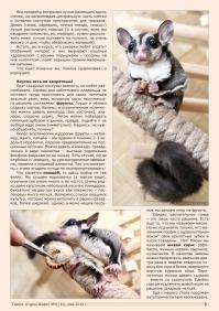 Газета СУРОК.ИНФО №4 (31), 2012 г., стр. 3