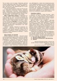 Газета СУРОК.ИНФО №4 (31), 2012 г., стр. 4
