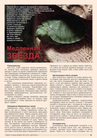 Газета СУРОК.ИНФО №4 (31), 2012 г., стр. 9