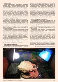 Газета СУРОК.ИНФО №4 (31), 2012 г., стр. 11