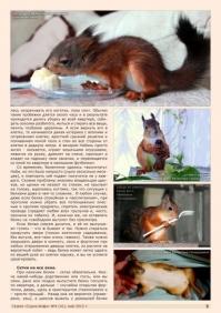 Газета СУРОК.ИНФО №4 (41), 2013 г., стр. 5