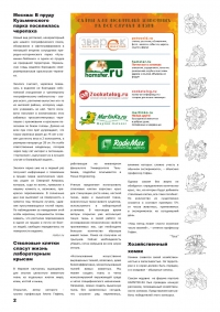 Газета СУРОК.ИНФО №5 (15), 2010 г., стр. 2