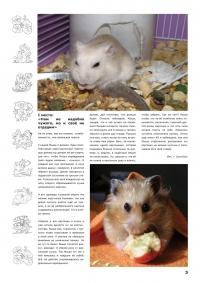 Газета СУРОК.ИНФО №5 (15), 2010 г., стр. 3