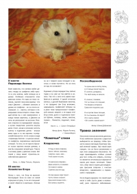 Газета СУРОК.ИНФО №5 (15), 2010 г., стр. 4