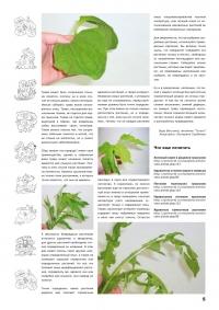 Газета СУРОК.ИНФО №5 (15), 2010 г., стр. 5
