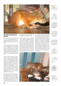 Газета СУРОК.ИНФО №5 (15), 2010 г., стр. 6