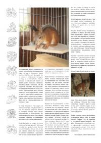 Газета СУРОК.ИНФО №5 (15), 2010 г., стр. 7