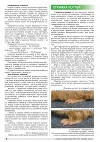 Газета СУРОК.ИНФО №5 (25), 2011 г., стр. 6
