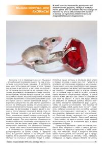 Газета СУРОК.ИНФО №5 (25), 2011 г., стр. 7