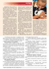 Газета СУРОК.ИНФО №5 (25), 2011 г., стр. 5