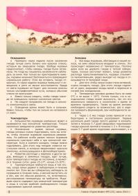 Газета СУРОК.ИНФО №5 (32), 2012 г., стр. 2