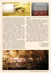 Газета СУРОК.ИНФО №5 (32), 2012 г., стр. 4